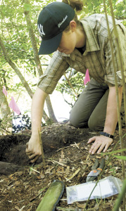 Caitlyn Sellar, an American University student, excavates around a tree root.