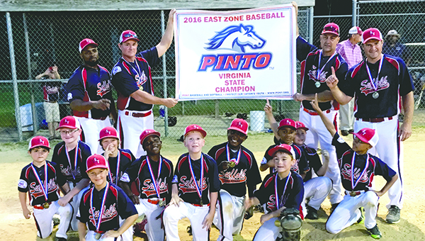 The SYAA all-star team celebrate after becoming Virginia State Champion in the Pinto division. The 7- and 8-year-old team beat Chesterfield National 17-16 in the tournament final.  (Submitted Photo)