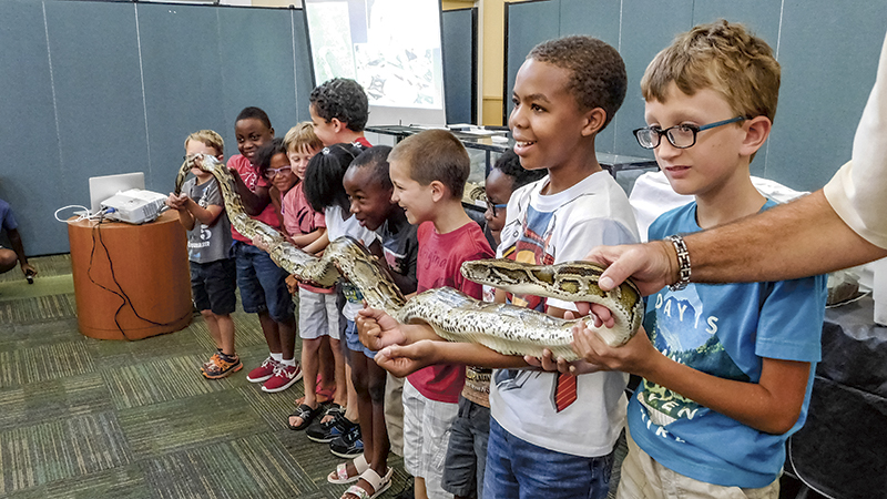 """John Barnes, founder of JB Rattles, helps several children hold """"Big Guy,"""" a 13-foot Burmese python. Barnes hosted a reptile show at the North Suffolk library on Friday."""